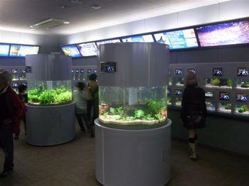 April2010 Nagoya 028.jpg