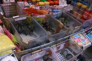 June 2011香港 040 (640x427).jpg