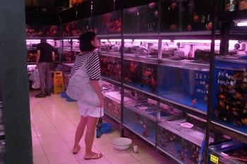 June 2011香港 080 (640x427).jpg