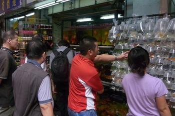 June 2011香港 081 (640x427).jpg